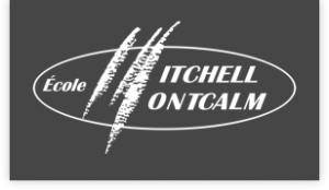 Mitchell-Montcalm - CoJT Management supported causes